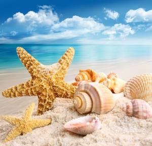 immagine vacanze